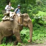 Koh Sok - Elefantenreiten