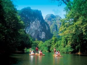 Bamboo Rafting Down River - Khao Sok Tours