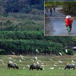 Koh Yao Noi Tour Khao Lak - Unexploited Thailand